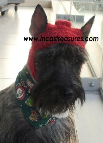 Alpaca Hats for Dogs